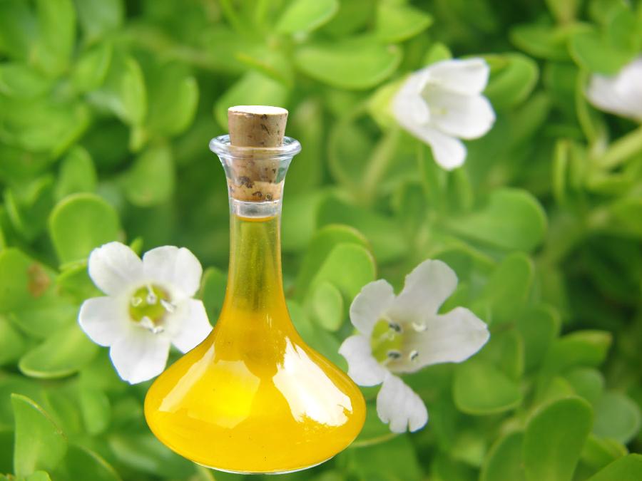 Brahmi Herb Oil