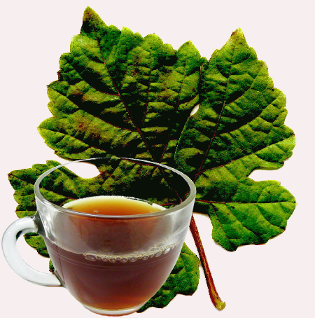 Grape Leaf Tea