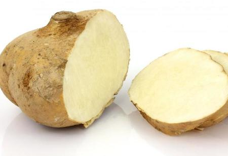 Jicama Vegetable