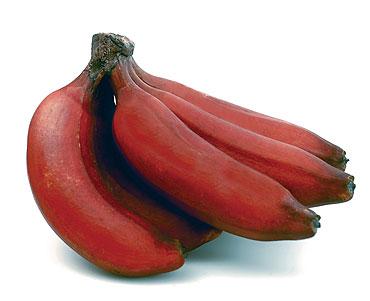 Red Banana