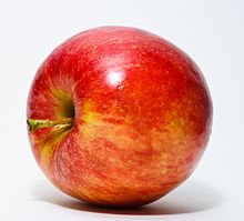 The apple is the pomaceous fruit of the Apple tree, species Malus domestica in the rose family