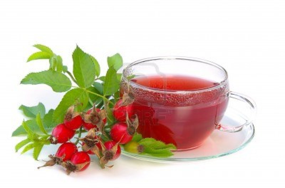 Rose-Hip-Tea‏