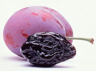 Prunes Fruit