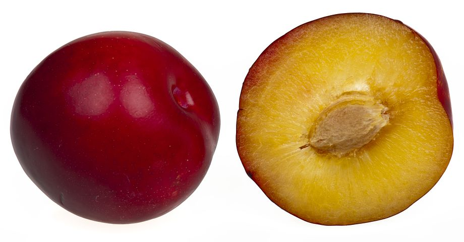 plumfruits-2202430__480