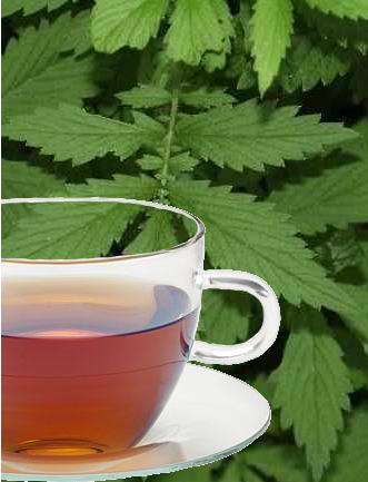 Agrimony Herb Tea