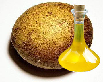 Bael Fruit Oil