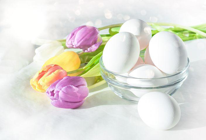 egg-3222535__480